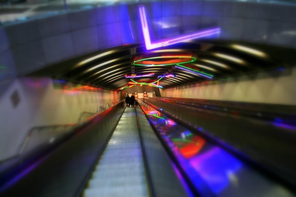 neon_cc-by-genista
